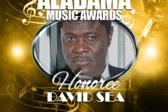 2020-AMA-Template-David-Sea